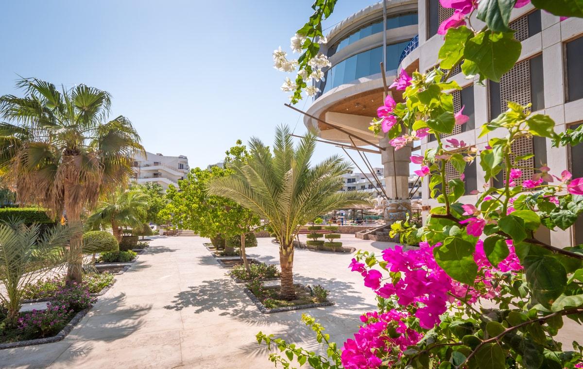 Letovanje_Egipat_Hoteli_Avio_Hurgada_Hotel_Seagull-11.jpg