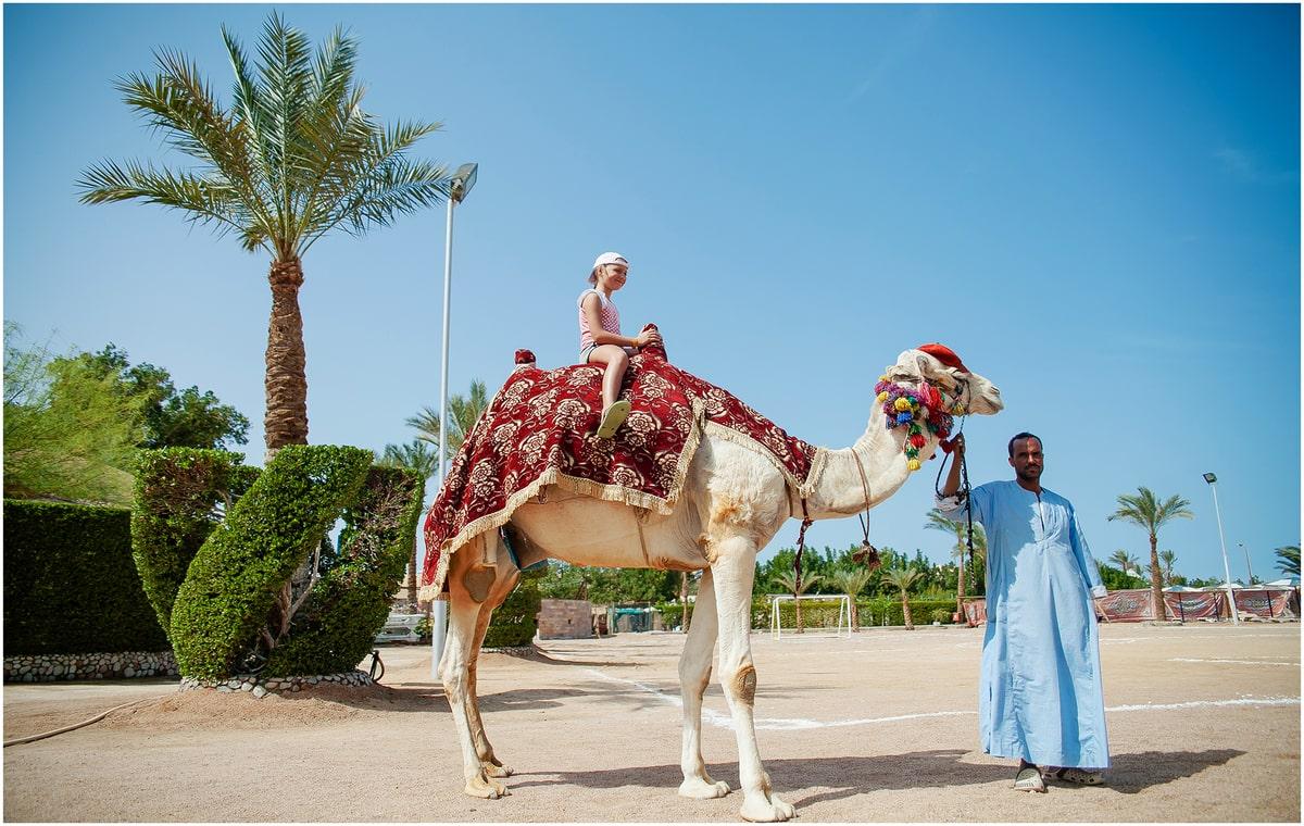 Letovanje_Egipat_Hoteli_Avio_Hurgada_Hotel_Seagull-27.jpg