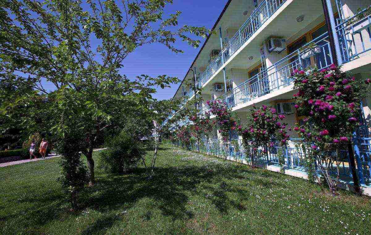 Letovanje_Bugarska_Hoteli_Suncev_Breg_Continental3_Hotel_Barcino_Tours-10.jpg