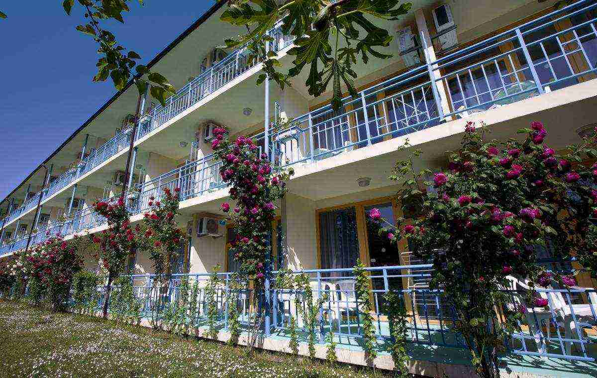 Letovanje_Bugarska_Hoteli_Suncev_Breg_Continental3_Hotel_Barcino_Tours-11.jpg