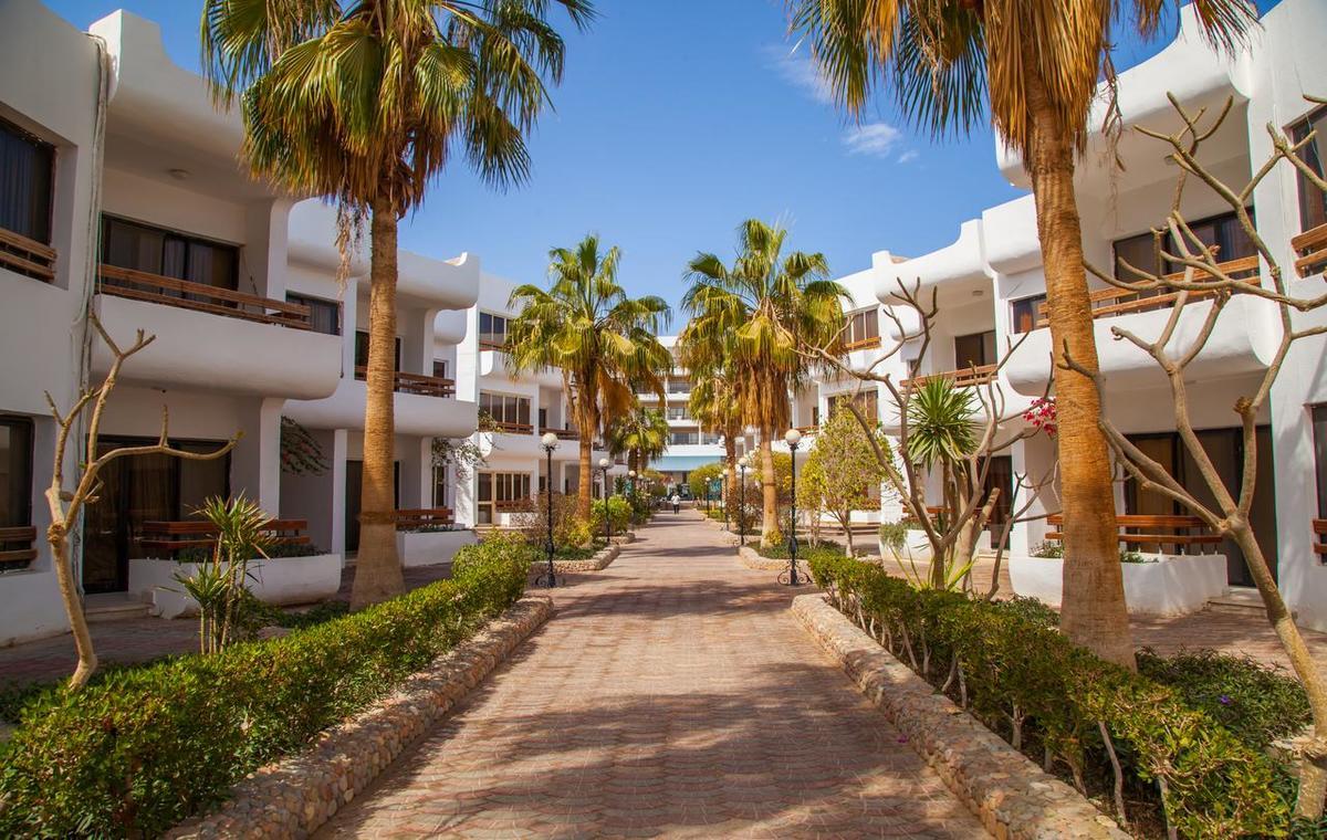 Letovanje_Egipat_Hoteli_Avio_Hurgada_Hotel_Marlinn_Inn_Azur_Resort-15.jpg