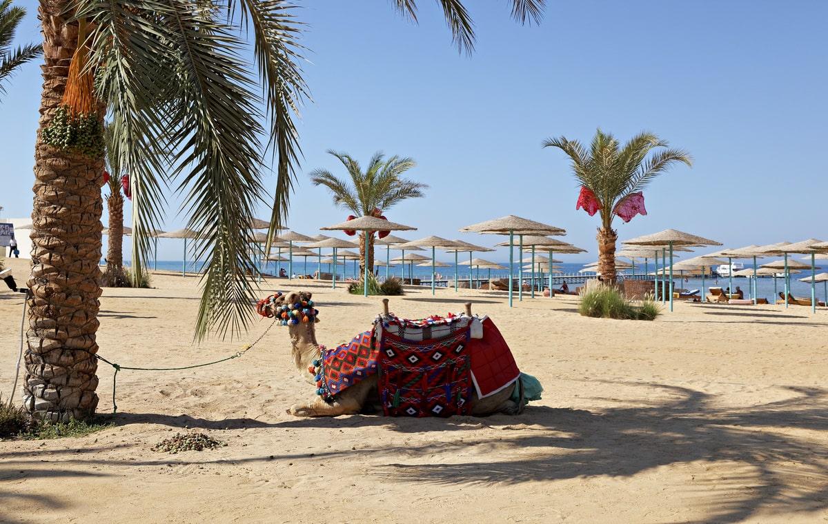 Letovanje_Egipat_Hoteli_Avio_Hurgada_Hotel_The_Three_Corners_Sunny_Beach_Resort-3-1.jpg