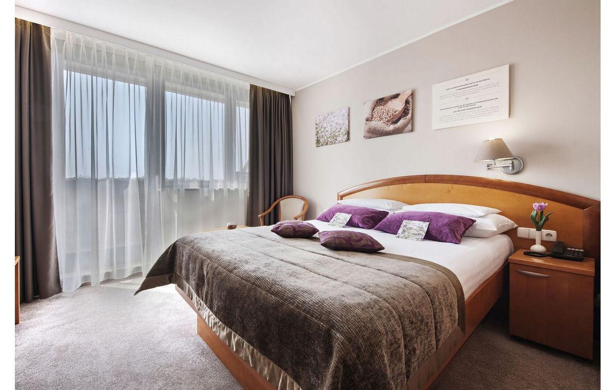 Terme_3000_Hotel_Ajda-26.jpg