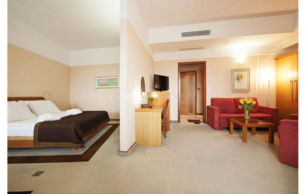 Terme_3000_Hotel_LIvada_Prestige-30.jpg