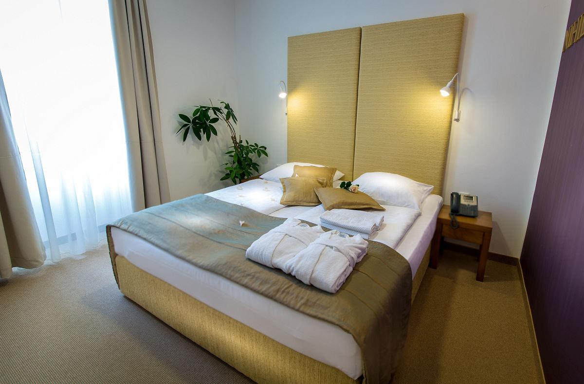 Terme_Rimske_terme_Hotel_Zdraviliski_dvor-8.jpg