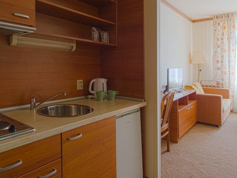 Zimovanje_Hoteli_Bugarska_Vihren_Palace14.jpg
