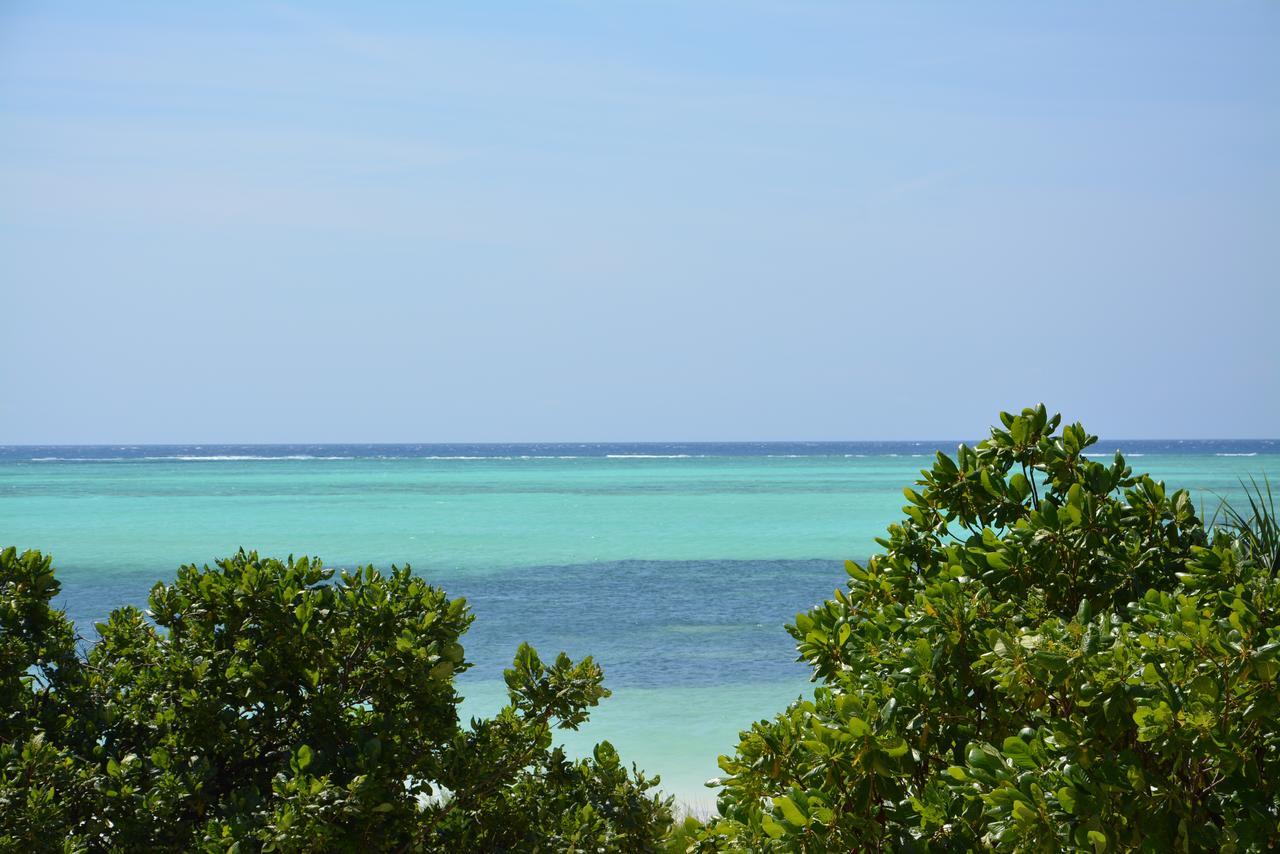 zanzibar_putovanje_neptune_pwani_beach_resort28.jpg